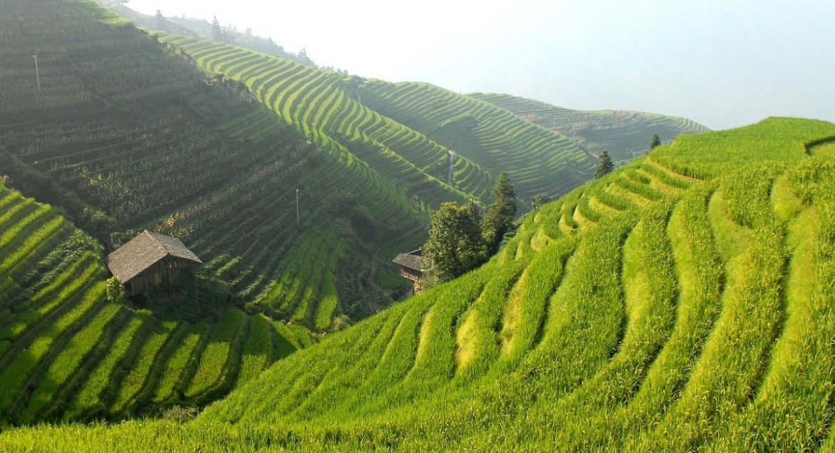 A-Travel-Guide-to-The-Banuae-Rice-Terraces-discover-feature.jpg
