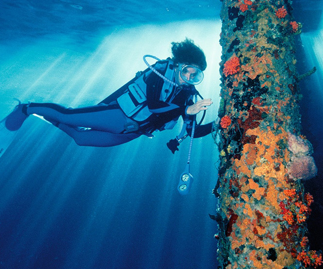 Rolex.org-is-Supporting-Science-and-Conservation-through-Storytelling-10b.jpg
